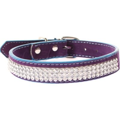 Hundehalsband Strasshalsband klein lila - 1