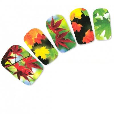 Tattoo Nail Art Aufkleber Bunte Blätter Bäume Herbst Wald Nagel Sticker - 1