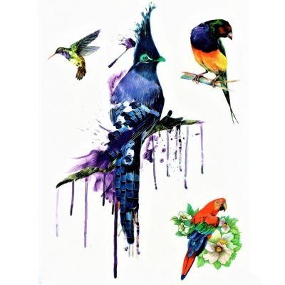 Temporäres Tattoo Kolibri Papagei Vogel Bunt Design Temporary Klebetattoo Körperkunst - 1