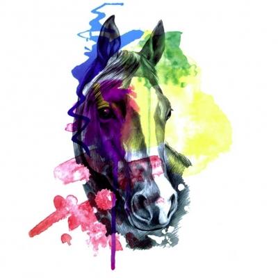 Temporäres Tattoo Pferd Bunt Design Temporary Klebetattoo Körperkunst - 1